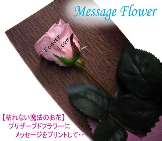 img_20120909-021757.jpg