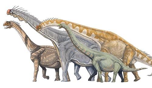 恐竜の復元予想図